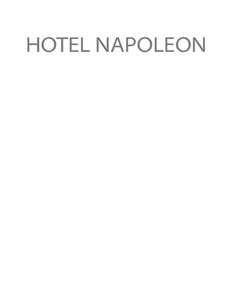 Hotel Napoleon Logo